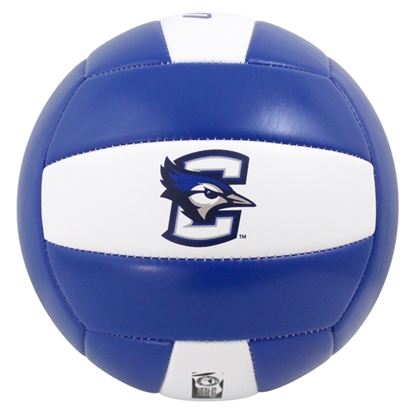 Picture of Creighton Baden® Deluxe Composite Official Size Volleyball